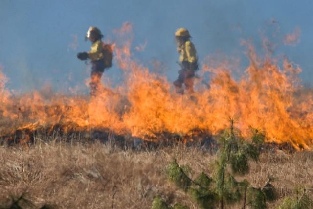 Zawadówka. Wielki pożar traw. Z ogniem walczyło 15 zastępów straży. Gasili też z powietrza