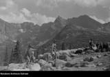 Tatry. Tak dawniej górale wypasali owce w górach. Stada pasły się na górskich halach [ZDJĘCIA]