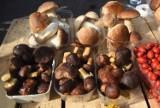 """Oto ceny grzybów w regionie. Grzybiarze słono sobie liczą za zbiory """"na życzenie"""""""
