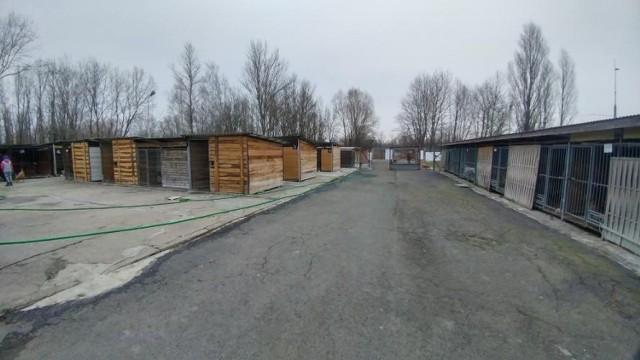 """By zostać wolontariuszem """"Przytuliska"""", trzeba przyjść na spotkanie organizacyjne, które odbędzie się 21 marca w schronisku."""