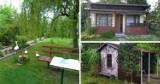 Ile kosztuje oaza zieleni w środku miasta? Sprawdź ogródki działkowe na sprzedaż w GLIWICACH i okolicy. Oto TOP 10 ofert!