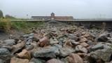 Brzezinka. Antysemickie napisy na drewnianych barakach w byłym obozie Auschwitz II-Birkenau. Sprawę badają specjaliści i policja [ZDJĘCIA]