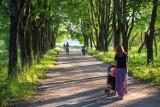 Skandaliczna sytuacja w Wilanowie. Matki z małym dzieckiem nie chciano wpuścić do Ośrodka Pomocy