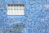 Nietypowy widok w Śródmieściu. Plastikowe butelki pokryły ścianę kamienicy. Wyjaśniamy o co chodzi [ZDJĘCIA]