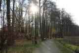 Ostatni moment na spacer po parku w Mikołowie [ZDJĘCIA] Synoptycy przewidują pogorszenie pogody