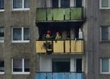 Pożar mieszkania w wieżowcu w Opolu. Strażacy w akcji [ZDJĘCIA I FILM]