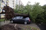 Pogodowy armagedon w Lublinie i okolicach. Strażacy cały czas pracują, aby drogi były przejezdne. Zobacz