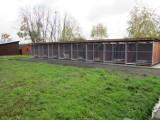 Schronisko dla bezdomnych psów w Kaliszu będzie miało nowe boksy