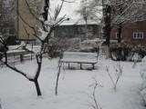 Bytom przyspany śniegiem. Zima przyszła
