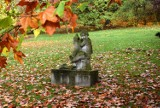 Najpiękniejsze miejsce w Gorzowie? Ten tajemniczy ogród naprawdę może zachwycić!