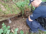 Kalisz: Pociski artyleryjskie i granaty moździerzowe znalezione w pobliżu mostu kolejowego