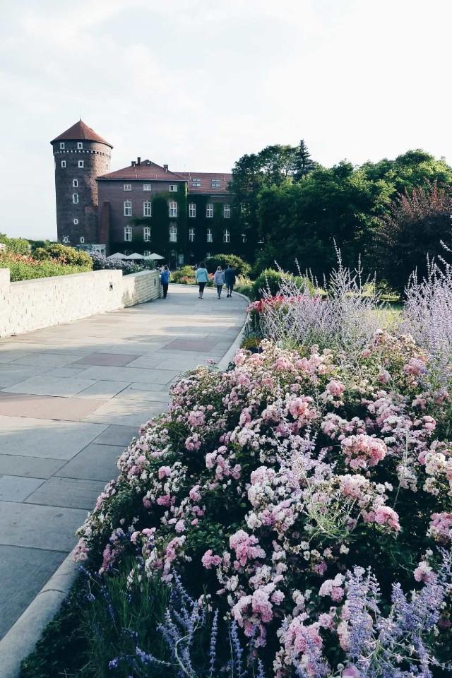 """Kolejną naszą propozycją na wolny, letni dzień w Krakowie jest wizyta w królewskich ogrodach na Wawelu. Sezonowa trasa """"Budowle i ogrody Wawelu"""" została udostępniona dla turystów w czerwcu 2015 roku. Zaczyna się ona na wystawie Wawel Zaginiony, prowadzi przez dziedzińce: zewnętrzny i arkadowy, ale jej głównym punktem są piękne, zrekonstruowane ogrody królewskie. Dodatkowo, po zakończeniu trasy istnieje możliwość indywidualnego zwiedzenia Baszty Sandomierskiej."""
