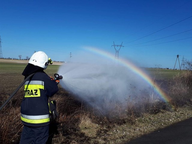 Strażacy odbierają pierwsze zgłoszenia o pożarze traw. Tym razem ratownicy OSP Unisław gasili ścieżkę rowerową w Głażewie. -Teraz jest bardzo sucho, a do  tego wietrznie, zatem wystarczy chwila nieuwagi i pożar się rozprzestrzenia - mówią unisławscy ochotnicy.