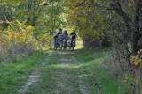 Wzdłuż Wisłoka w Krośnie postaną nowe ścieżki rowerowe