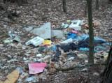 """""""Razem wysprzątamy las"""" w Rotmance. W sobotę chętni mogą dołączyć do akcji"""