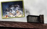 Co wy tam palicie?! Bydgoszczanie złapani na gorącym uczynku. Jaka jest kara za palenie śmieciami?