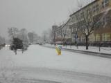 Oborniki w śnieżnej scenerii. Czy w tym roku spadnie śnieg?
