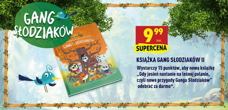 Nowy Gang Slodziakow Od Dzisiaj W Sieci Sklepow Biedronka Swidnica Nasze Miasto
