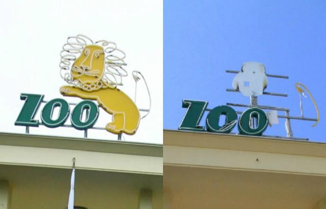 Ze słynnego neonu wrocławskiego zoo zdmuchnęło lwa
