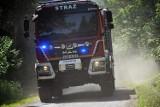 Strażacy walczyli z pożarem lasu na granicy Kwiatonia i Smerekowca