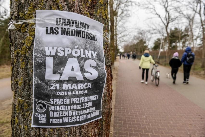 Gdańsk Brzeźno - spacer przeciwników wycinki lasu