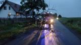 Było niebezpiecznie. 20 interwencji straży po burzy 28 lipca w Zduńskiej Woli i okolicy ZDJĘCIA
