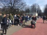 Niedziela w Parku Śląskim: Kolejki do zoo i tłumy spacerowiczów [ZDJĘCIA]