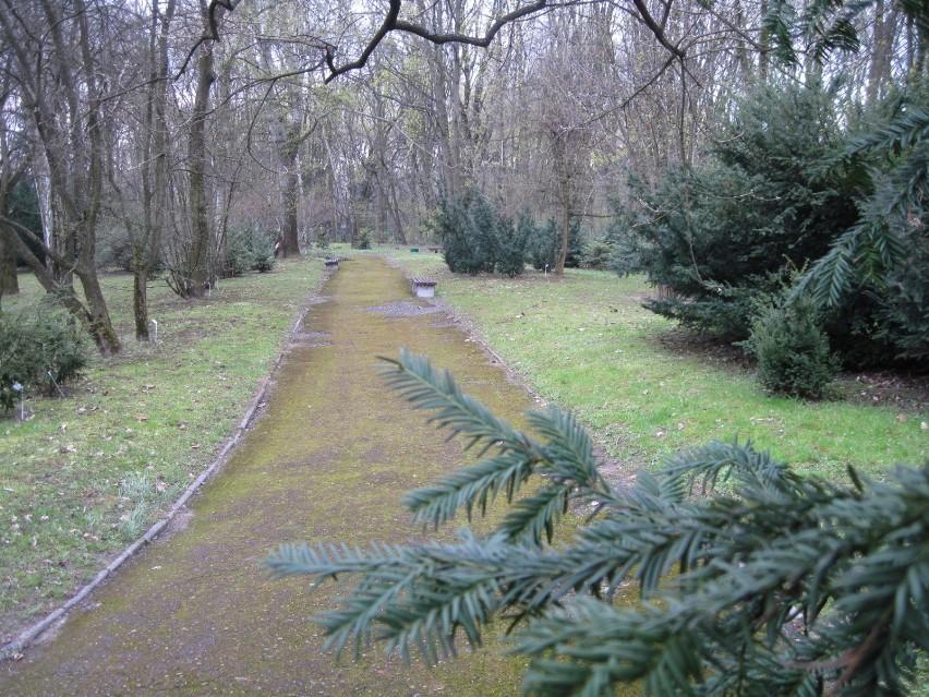 Ogród Botaniczny W Lublinie Znowu Otwarty Dla Zwiedzających