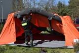 Ustawili namiot. Tu będzie pobierany materiał do badań [ZDJĘCIA]