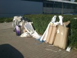 Wrocław utonie w odpadach? Śmieciowy chaos trwa