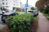 Będą nowe parkingi na LSM