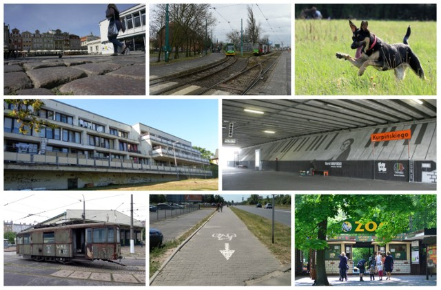 27 września rusza głosowanie w Poznańskim Budżecie Obywatelskim 2019. Poznaniacy zdecydują jakie pomysły mają zostać zrealizowane w przyszłym roku. Także ogólnomiejskie, z których jeden może kosztować do dwóch milionów złotych. Zobacz w galerii najbardziej kosztowne projekty, które w tym roku zgłosili mieszkańcy Poznania ------->