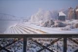 Bajkowy Toruń skuty lodem. Oto najnowsze zdjęcia zimowego Torunia