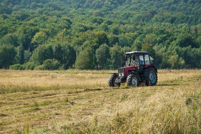 Traktory używane są w rolnictwie, transporcie, firmach komunalnych i drogowych. Te ciągniki rolnicze zainteresują nawet mieszczuchów. Zobaczcie, czym rolnik jedzie w pole. Oferty z cenami ciągników pochodzą z serwisu OLX.