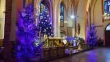 Stargard. Choinki i szopki bożonarodzeniowe w kościołach ZDJĘCIA