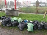 Akcja Czysty Wisłok. Mieszkańcy sprzątali brzegi rzeki. Uzbierano 180 worków śmieci [ZDJĘCIA]