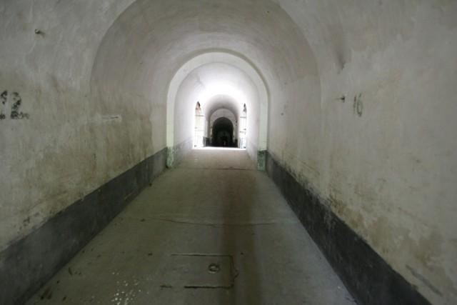 Większość krakowskich fortów jest w tragicznym stanie (na zdj. jeden z lepiej zachowanych, Fort Tonie)