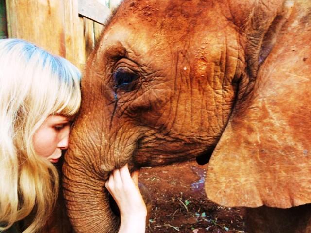 Ela i Natalia upodobały sobie słonie. Dziewczyny przemierzają ...