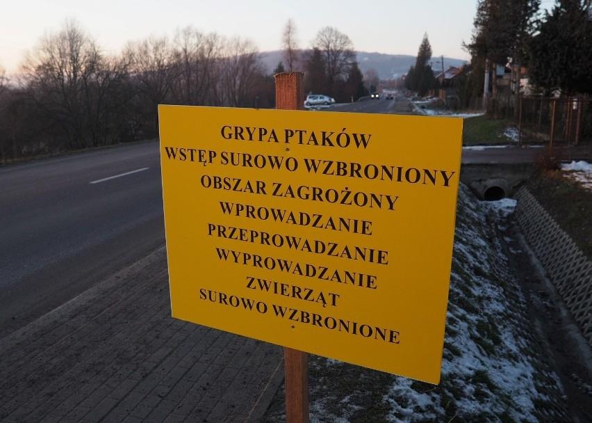 archiwum Polska Press