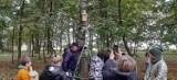 Gmina Gołuchów. W Jedlcu dzieci zawiesiły na drzewach budki lęgowe dla ptaków