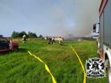Uparty pożar w Białogórze (gmina Krokowa): paliły się baloty słomy. Gaszone były kilka razy | ZDJĘCIA, NADMORSKA KRONIKA POLICYJNA