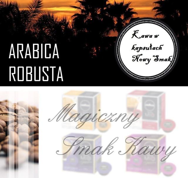 Koncepcja Agnieszka Przybysz Grafika wykonanie Jerzy Dłużniewski Licencji udzieliła firma www.infotech.com.pl