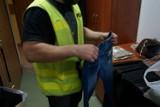 Podróbki ubrań w Mikołowie