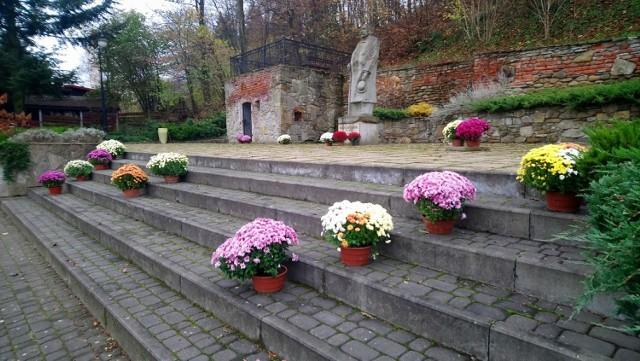 Chryzantemy podarowane przez ogrodnika z Libuszy ozdobiły Plac Długosza w Sękowej
