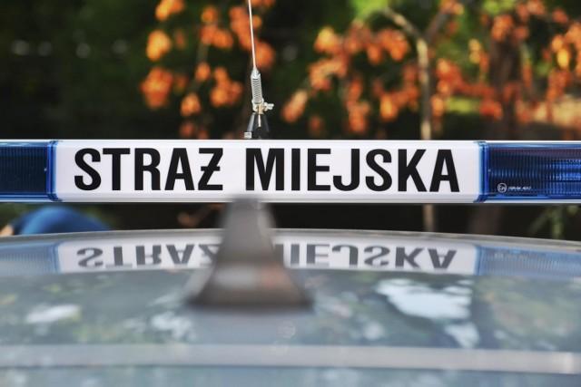 W 2019 r. mieszkańcy przekazali 81851 zgłoszeń poznańskiej straży miejskiej (w 2018 r. było 60300 zgłoszeń). Najwięcej, bo aż 52918 spraw dotyczyło nieprawidłowego parkowania pojazdów. Czystość i porządek to 6280 zgłoszeń. Kolejne to: zwierzęta – 4938, spożywanie alkoholu i z tym związane problemy – 3690, spalanie odpadów – 3571, zagrożenia dla zdrowia i życia - 2602, awarie, uszkodzenia infrastruktury – 2019 , bezdomni – 1606, zakłócenie spokoju – 1602 i środowisko/odpady – 841.  Przejdź dalej --->