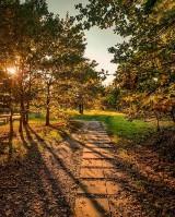Jesień w obiektywie oleśniczan. Zobacz TOP 10 ujęć z Instagrama