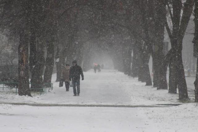 """Czy mieszkańcy Puław powinni martwić się """"bestią ze wschodu""""? Przejdź do galerii i zobacz, jaką pogodę przewidują synoptycy dla Puław."""
