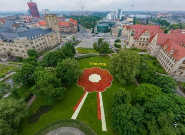 Miliony kwiatów stworzyły powstańczą rozetę - z perspektywy uchwyconej przed drona ekipy z aveos.pl widać ją najlepiej.   Więcej: Poznan z lotu ptaka