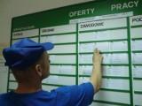 Nowe oferty pracy w Powiatowym Urzędzie Pracy w Kaliszu. Sprawdź za jaką stawkę