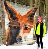 Małżeństwo ze Sławska natknęło się w lesie na liska na folii. Nieznany artysta znów dał znać o sobie ZDJĘCIA